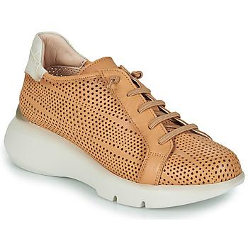 Chaussures Femme Baskets basses Hispanitas TELMA Camel / Beige