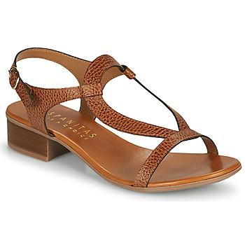 Chaussures Femme Sandales et Nu-pieds Hispanitas LOLA Marron