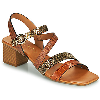Chaussures Femme Sandales et Nu-pieds Hispanitas OLGA Marron / Bronze