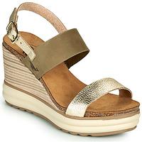 Chaussures Femme Sandales et Nu-pieds Plakton PLAKA Kaki / Doré