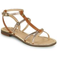 Chaussures Femme Sandales et Nu-pieds JB Martin 1GRIOTTES Marron