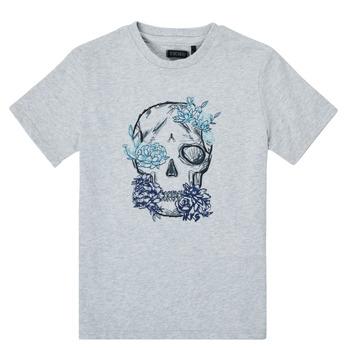 Vêtements Garçon T-shirts manches courtes Ikks LOUISA Gris