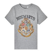 Vêtements Enfant T-shirts manches courtes TEAM HEROES  HARRY POTTER Gris
