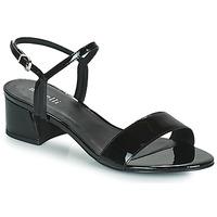 Chaussures Femme Sandales et Nu-pieds Minelli VERINA Noir