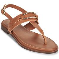 Chaussures Femme Sandales et Nu-pieds Minelli LIZA Marron