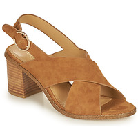 Chaussures Femme Sandales et Nu-pieds Minelli CASIMIERA Marron
