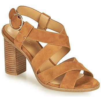 Chaussures Femme Sandales et Nu-pieds Minelli CLAVIA Marron