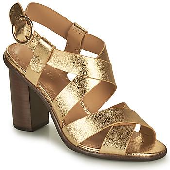 Chaussures Femme Sandales et Nu-pieds Minelli THIYA Doré