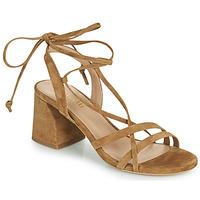 Chaussures Femme Sandales et Nu-pieds Minelli TATIA Marron