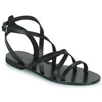 Chaussures Femme Sandales et Nu-pieds Minelli HOULLY Noir