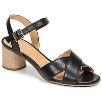 Chaussures Femme Sandales et Nu-pieds Dream in Green ODAINE Noir
