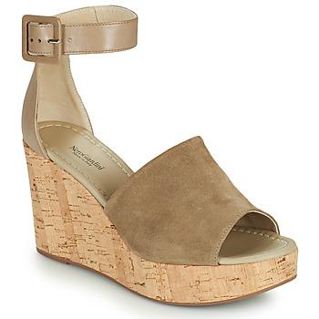 Chaussures Femme Sandales et Nu-pieds NeroGiardini NORWAY Taupe