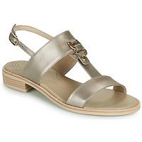 Chaussures Femme Sandales et Nu-pieds NeroGiardini PLUIE Doré
