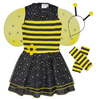 Vêtements Fille Déguisements Fun Costumes COSTUME ENFANT BEE BEE Multicolore