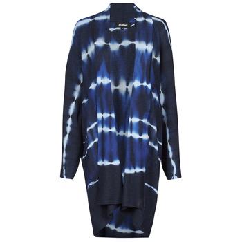 Vêtements Femme Gilets / Cardigans Desigual BRUMA Bleu