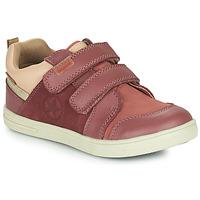 Chaussures Fille Baskets basses Bisgaard LEVI TEX Rose