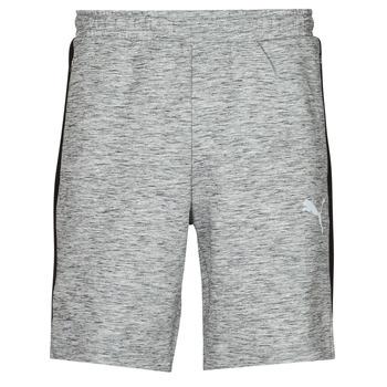 Vêtements Homme Shorts / Bermudas Puma EVOSTRIPE SHORTS 8 Gris / Noir