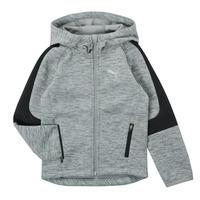 Vêtements Garçon Sweats Puma EVOSTRIPE FZ HOODED JACKET Gris