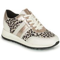 Chaussures Femme Baskets basses Geox TABELYA Blanc / Noir / Argenté