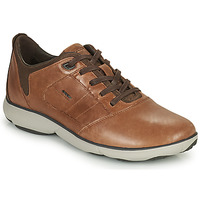 Chaussures Homme Baskets basses Geox NEBULA Marron