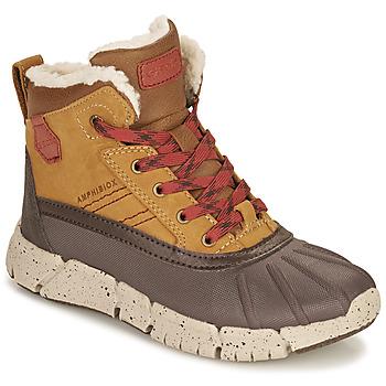 Chaussures Garçon Boots Geox FLEXYPER ABX Marron