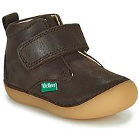 Chaussures Garçon Boots Kickers SABIO Marron