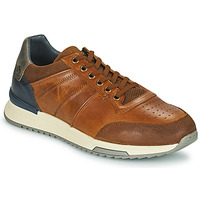 Chaussures Homme Baskets basses Bullboxer NICO Marron
