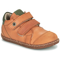 Chaussures Garçon Baskets montantes Aster WASHAN Camel / Vert
