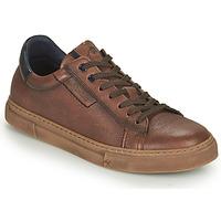 Chaussures Homme Baskets basses Fluchos NIKO Marron