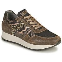 Chaussures Femme Baskets basses NeroGiardini AVOCATO Kaki / Leopard