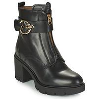 Chaussures Femme Bottines NeroGiardini CELERO Noir
