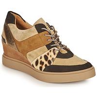 Chaussures Femme Baskets basses Mam'Zelle PERRY Beige / Noir / Leopard