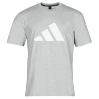 Vêtements Homme T-shirts manches courtes adidas Performance M FI 3B TEE Bruyere gris moyen
