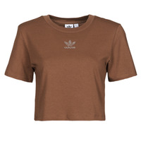 Vêtements Femme T-shirts manches courtes adidas Originals CROPPED  TEE Marron
