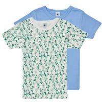 Vêtements Garçon T-shirts manches courtes Petit Bateau LOLITA Multicolore