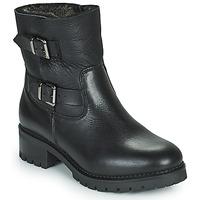 Chaussures Femme Bottines Minelli LEILA Noir
