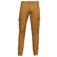 Vêtements Homme Pantalons cargo Jack & Jones JJIPAUL Camel