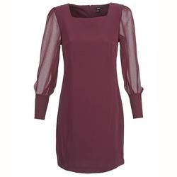 Vêtements Femme Robes courtes Mexx JAJAVA Bordeaux