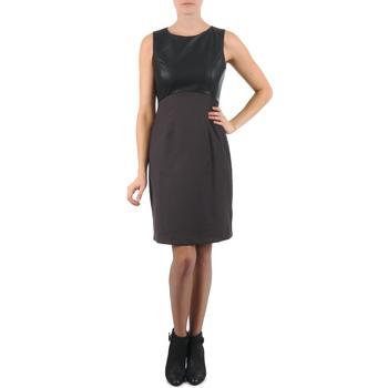 Vêtements Femme Robes courtes La City RTANIA Noir / Gris