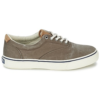 Chaussures Sperry Top-Sider STRIPER LL CVO