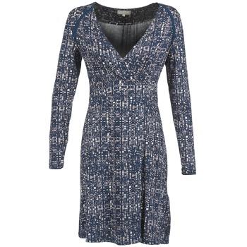 Vêtements Femme Robes courtes Cream OMAGA Bleu