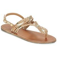 Chaussures Femme Sandales et Nu-pieds Pepe jeans JANE WOVEN METALLIC Marron
