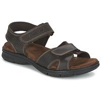 Chaussures Homme Sandales et Nu-pieds Panama Jack SANDERS Marron