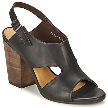 Chaussures Femme Sandales et Nu-pieds Coclico CASPAR Noir
