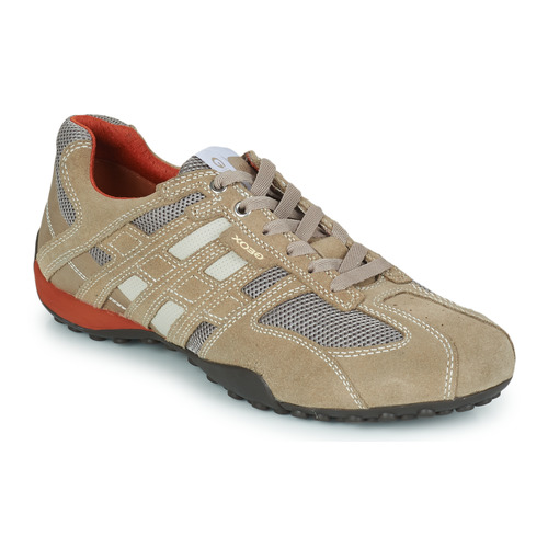 Chaussures Homme Baskets basses Geox SNAKE K Beige