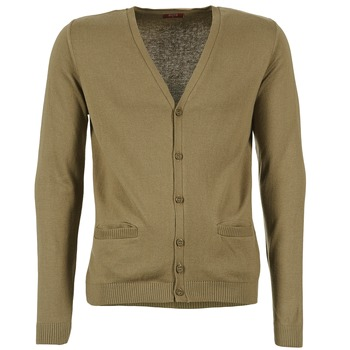 Vêtements Homme Gilets / Cardigans BOTD EFLOVA Taupe