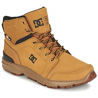 Boots DC Shoes TORSTEIN