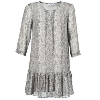 Vêtements Femme Robes courtes Suncoo CIARA Gris