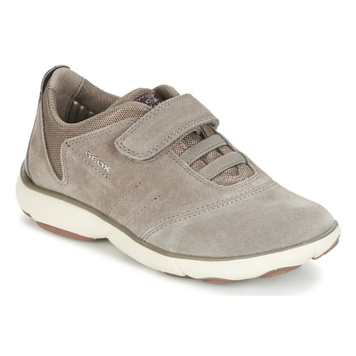 Chaussures Fille Baskets basses Geox NEBULA GIRL Taupe