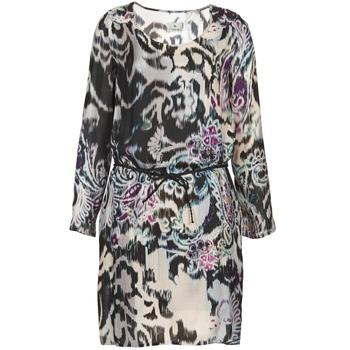 Vêtements Femme Robes courtes Chipie SERRENA Multicolore